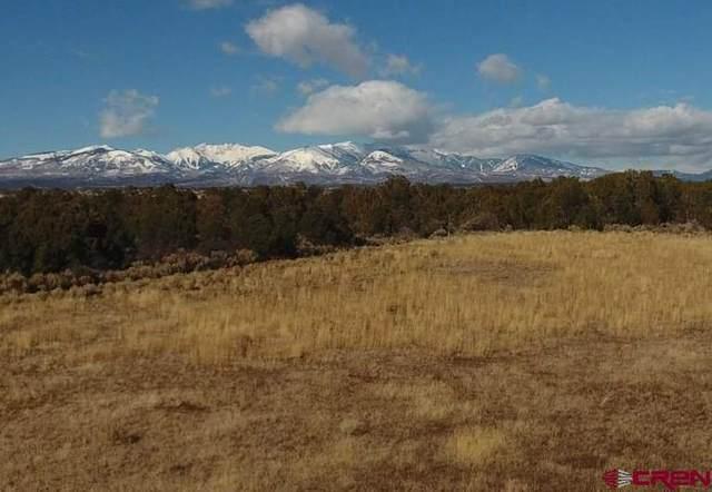11717 County Road 136, Hesperus, CO 81326 (MLS #766602) :: Durango Mountain Realty