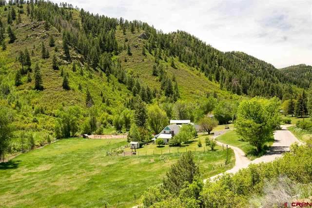 2261 County Road 207, Durango, CO 81301 (MLS #766616) :: Durango Mountain Realty