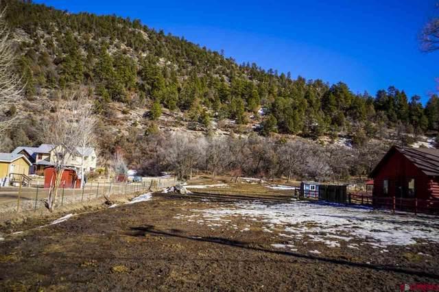 1468 County Road 250, Durango, CO 81301 (MLS #766640) :: Durango Mountain Realty