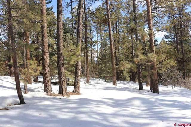 TBD Sierra Drive, Durango, CO 81301 (MLS #766660) :: Durango Mountain Realty