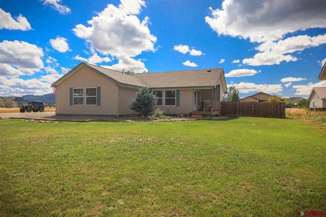 5 Port Avenue, Pagosa Springs, CO 81147 (MLS #766687) :: The Dawn Howe Group   Keller Williams Colorado West Realty