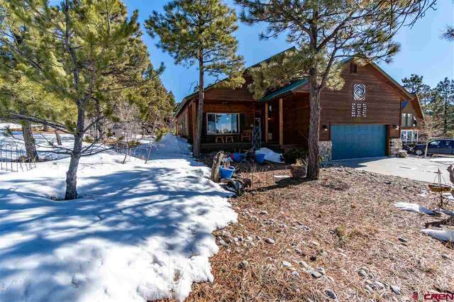 286 Woodland Drive, Pagosa Springs, CO 81147 (MLS #766695) :: The Dawn Howe Group   Keller Williams Colorado West Realty