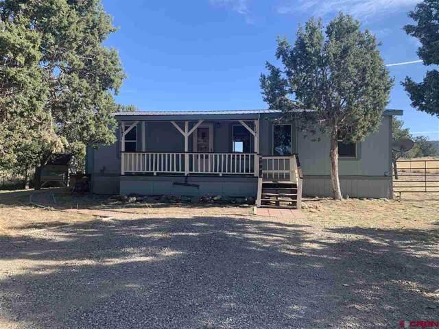 11668 County Road 310, Ignacio, CO 81137 (MLS #766696) :: The Dawn Howe Group | Keller Williams Colorado West Realty