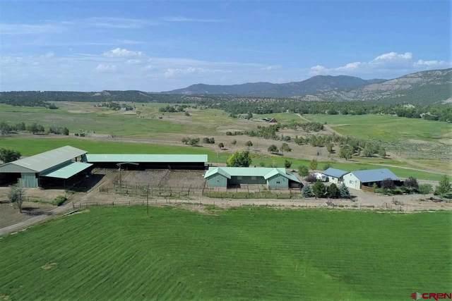 2626 Cr 330, Allison, CO 81137 (MLS #766723) :: The Dawn Howe Group | Keller Williams Colorado West Realty