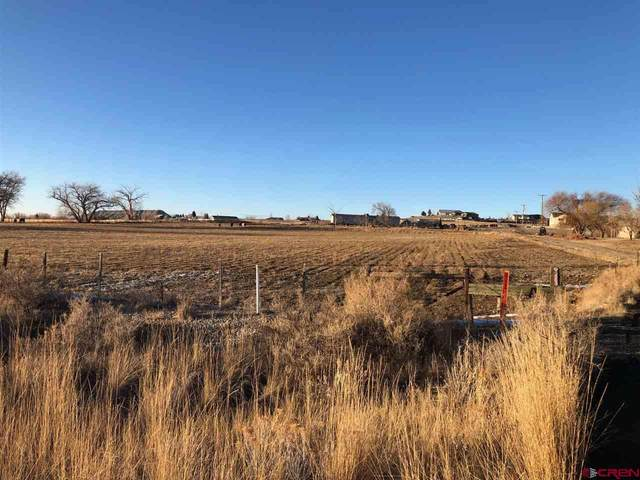 67563 Highway 50, Montrose, CO 81401 (MLS #766736) :: The Dawn Howe Group | Keller Williams Colorado West Realty