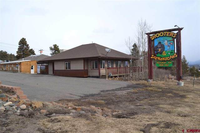 23 Pike Drive, Pagosa Springs, CO 81147 (MLS #766763) :: The Dawn Howe Group   Keller Williams Colorado West Realty