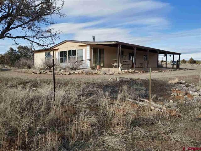 329 Road 4020, Navajo Dam, NM 87419 (MLS #766819) :: The Dawn Howe Group | Keller Williams Colorado West Realty