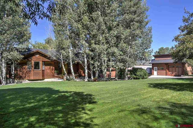 385 Rainbow Road, Durango, CO 81303 (MLS #766844) :: Durango Mountain Realty