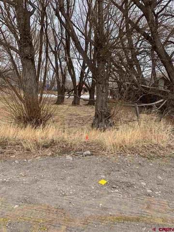 0 5th Street, Del Norte, CO 81132 (MLS #766858) :: The Dawn Howe Group | Keller Williams Colorado West Realty
