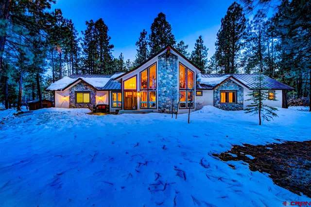 730 E Log Hill Road, Pagosa Springs, CO 81147 (MLS #766860) :: The Dawn Howe Group | Keller Williams Colorado West Realty