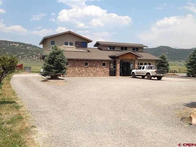 570 Palomino Trail, Ridgway, CO 81432 (MLS #766866) :: The Dawn Howe Group | Keller Williams Colorado West Realty
