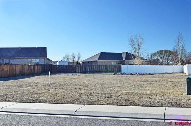 Lot N-11 Congress Street, Montrose, CO 81401 (MLS #766988) :: The Dawn Howe Group | Keller Williams Colorado West Realty