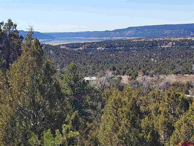 TBD Sunset Trail, Arboles, CO 81121 (MLS #767445) :: The Dawn Howe Group   Keller Williams Colorado West Realty