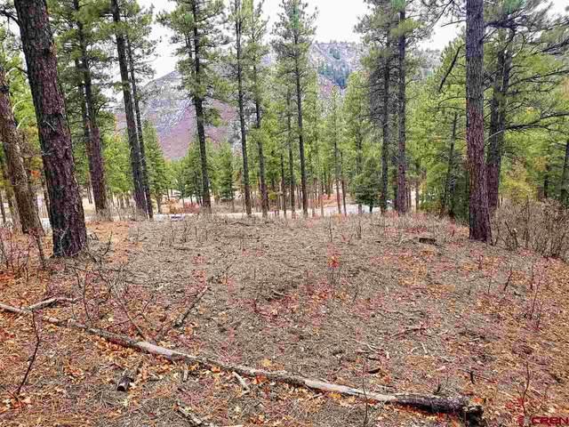 (Lot 88-1) 20 Sego Lily Court, Durango, CO 81301 (MLS #767542) :: Durango Mountain Realty