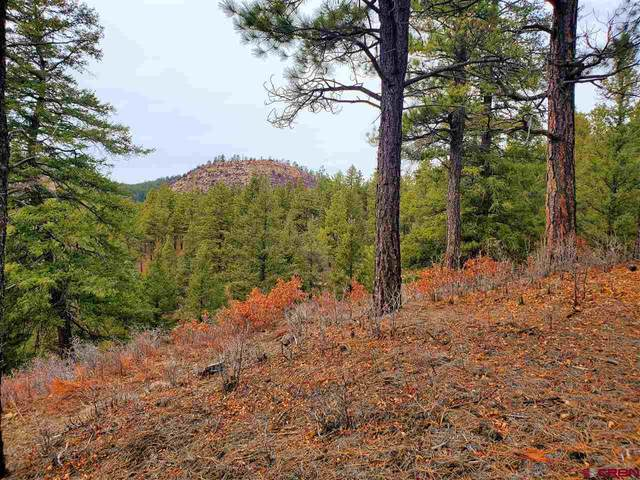 (Lot 90) TBD Sego Lily Court, Durango, CO 81301 (MLS #767544) :: The Dawn Howe Group | Keller Williams Colorado West Realty