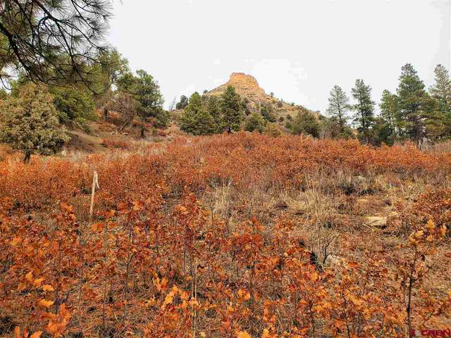 (Lot 92) TBD Sego Lily Court, Durango, CO 81301 (MLS #767546) :: The Dawn Howe Group | Keller Williams Colorado West Realty