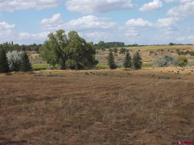 21243 Road P.3, Cortez, CO 81321 (MLS #767721) :: The Dawn Howe Group | Keller Williams Colorado West Realty