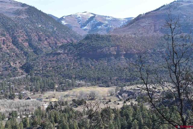 184 Reynolds Place, Ridgway, CO 81432 (MLS #767858) :: The Dawn Howe Group | Keller Williams Colorado West Realty