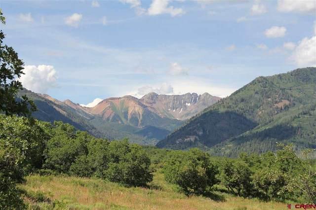 216 Gold Bar Dr, Hesperus, CO 81326 (MLS #767869) :: Durango Mountain Realty