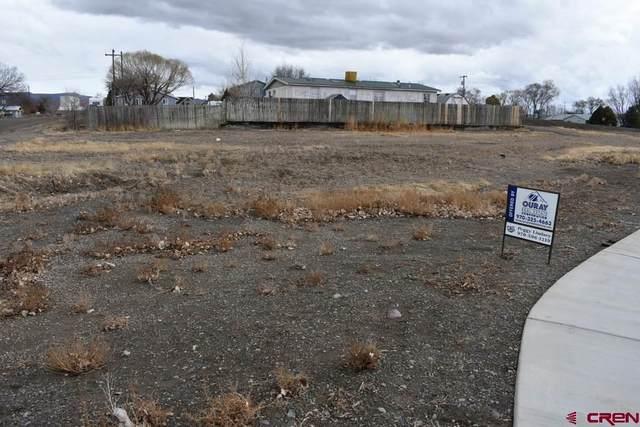 TBD Hwy 50 Business Loop, Olathe, CO 81425 (MLS #767870) :: The Dawn Howe Group | Keller Williams Colorado West Realty
