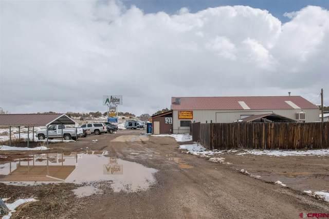 21 Valle Escondido Drive, Durango, CO 81303 (MLS #767931) :: Durango Mountain Realty