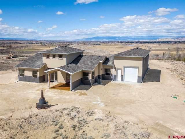17570 6700 Road, Montrose, CO 81403 (MLS #767987) :: The Dawn Howe Group | Keller Williams Colorado West Realty