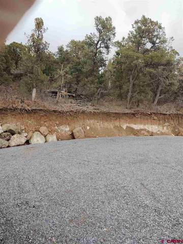 19378 Williams Creek Road, Cedaredge, CO 81413 (MLS #768034) :: The Dawn Howe Group | Keller Williams Colorado West Realty