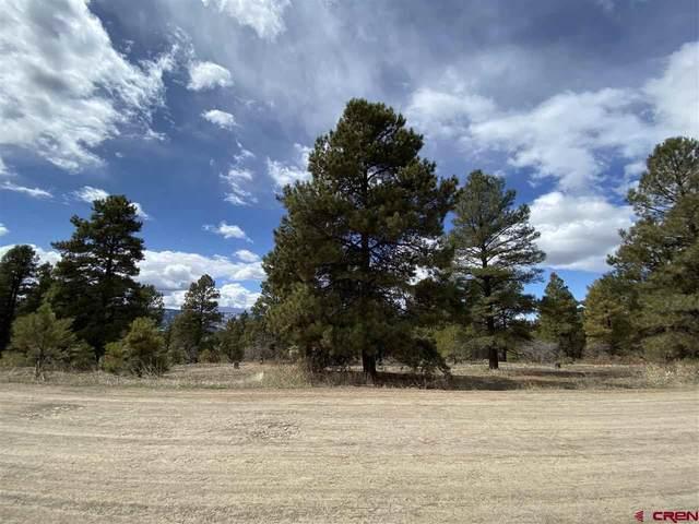 484 Prospect Boulevard, Pagosa Springs, CO 81147 (MLS #768053) :: The Dawn Howe Group | Keller Williams Colorado West Realty