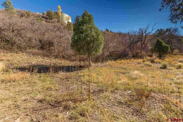 TBD Hillside Avenue, Durango, CO 81301 (MLS #768064) :: Durango Mountain Realty