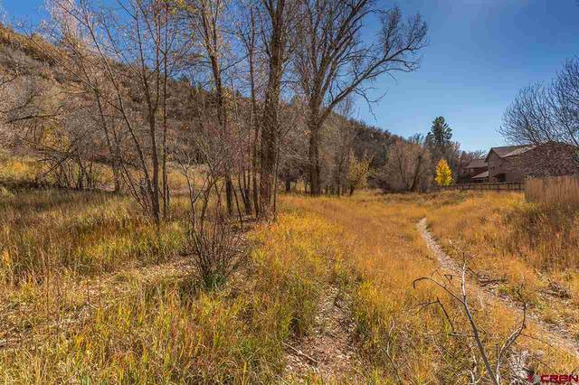 TBD Hillside Avenue, Durango, CO 81301 (MLS #768066) :: Durango Mountain Realty