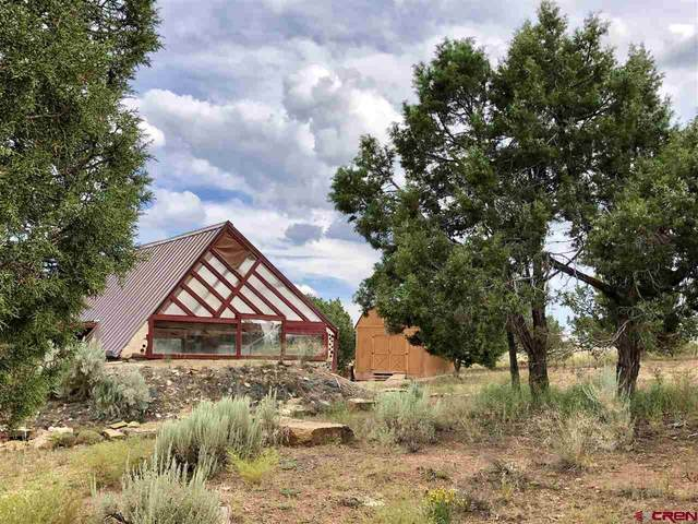 10350 Road 21.9, Cortez, CO 81321 (MLS #768253) :: The Dawn Howe Group | Keller Williams Colorado West Realty