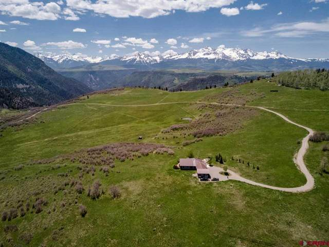 395 Flying Husky Trail, Placerville, CO 81435 (MLS #768270) :: The Dawn Howe Group | Keller Williams Colorado West Realty