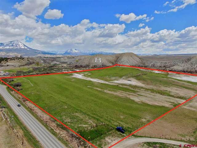 00 State Highway 92, Hotchkiss, CO 81419 (MLS #768282) :: The Dawn Howe Group | Keller Williams Colorado West Realty