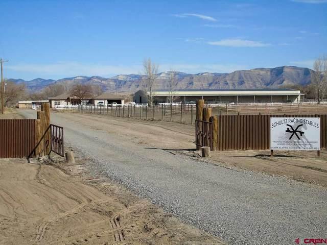 2122 L Road, Fruita, CO 81521 (MLS #768328) :: The Dawn Howe Group | Keller Williams Colorado West Realty