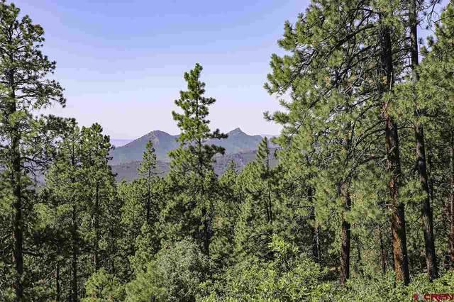 65 Overlook Drive, Durango, CO 81301 (MLS #768435) :: Durango Mountain Realty