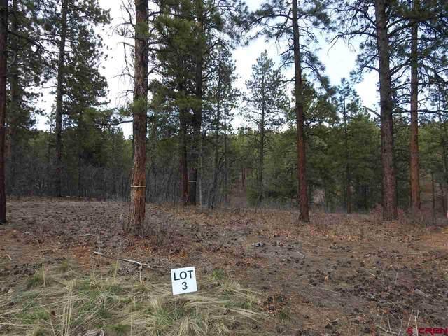 47 Canyon Pines Place, Durango, CO 81301 (MLS #768465) :: Durango Mountain Realty