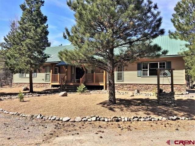 1770 Foxtail Trail, Lake City, CO 81235 (MLS #768474) :: The Dawn Howe Group | Keller Williams Colorado West Realty