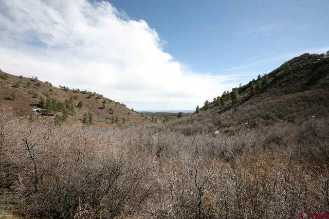 TBD Rancho Mira Sol, Durango, CO 81301 (MLS #768516) :: The Dawn Howe Group | Keller Williams Colorado West Realty