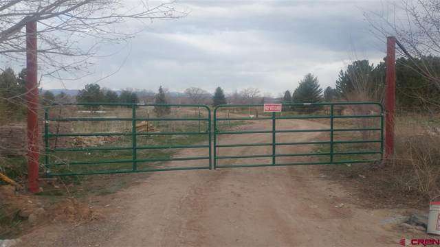 TBD Fresa Lane, Olathe, CO 81425 (MLS #768589) :: The Dawn Howe Group   Keller Williams Colorado West Realty