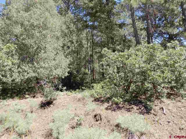 651 Pineview Road, Pagosa Springs, CO 81147 (MLS #768605) :: The Dawn Howe Group | Keller Williams Colorado West Realty