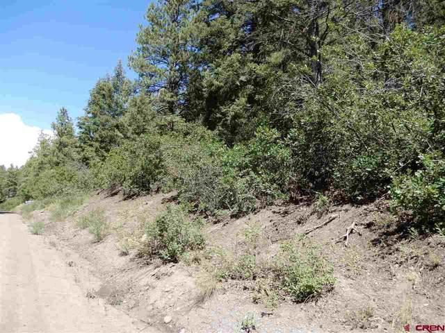 709 Pineview Road, Pagosa Springs, CO 81147 (MLS #768606) :: The Dawn Howe Group | Keller Williams Colorado West Realty
