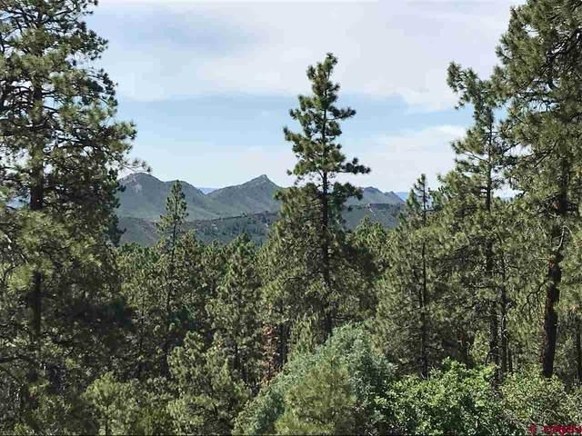 231 Durango Road, Durango, CO 81301 (MLS #768649) :: Durango Mountain Realty