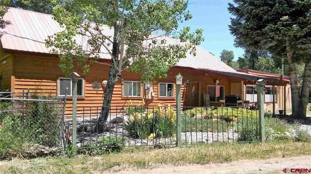 35 Forrest Groves Lane, Durango, CO 81301 (MLS #768658) :: Durango Mountain Realty
