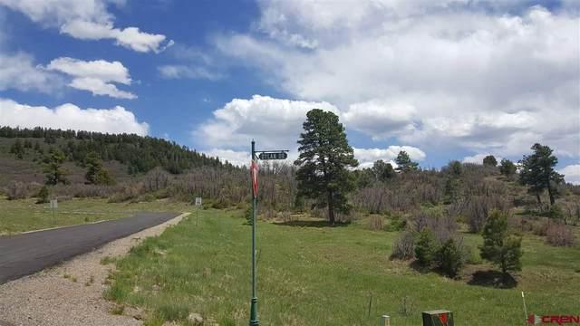 84 Dylan Drive, Pagosa Springs, CO 81147 (MLS #768707) :: The Dawn Howe Group   Keller Williams Colorado West Realty