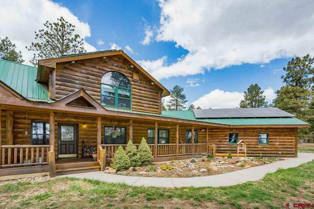 159 Shiloh Circle, Durango, CO 81303 (MLS #768793) :: The Dawn Howe Group | Keller Williams Colorado West Realty