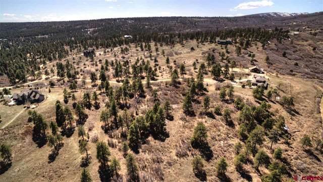 396 Pariss Lane, Durango, CO 81301 (MLS #768869) :: Durango Mountain Realty