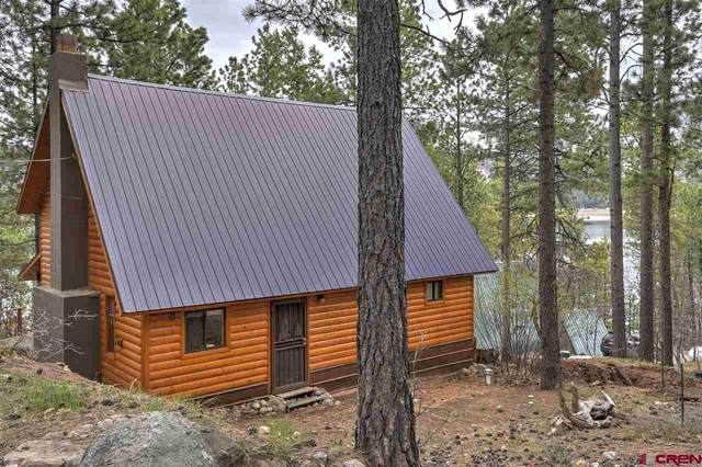14310 Cr 501, Vallecito Lake/Bayfield, CO 81122 (MLS #768906) :: The Dawn Howe Group | Keller Williams Colorado West Realty