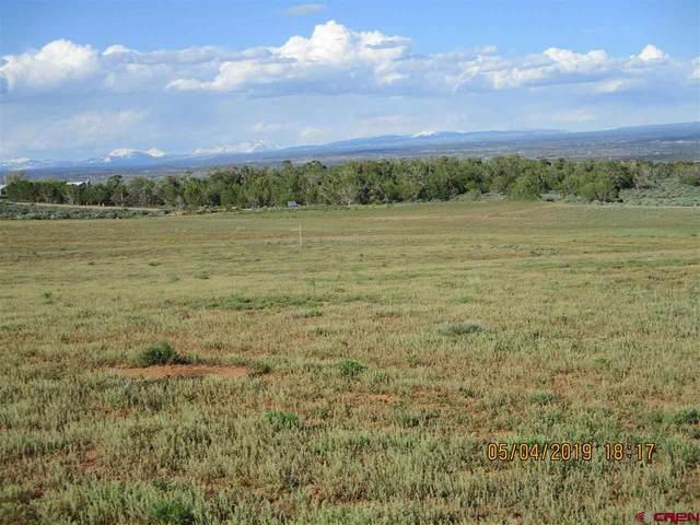 TBD Road 17.9 Loop (G) Lot #11, Cortez, CO 81321 (MLS #768923) :: The Dawn Howe Group   Keller Williams Colorado West Realty