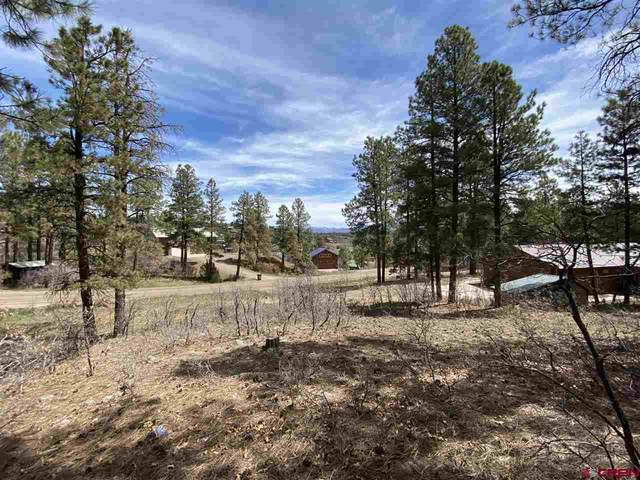 221 Brookhill Dr., Pagosa Springs, CO 81147 (MLS #768976) :: The Dawn Howe Group | Keller Williams Colorado West Realty