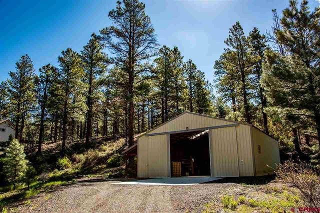 140 Evergreen Dr., Pagosa Springs, CO 81147 (MLS #768980) :: The Dawn Howe Group | Keller Williams Colorado West Realty